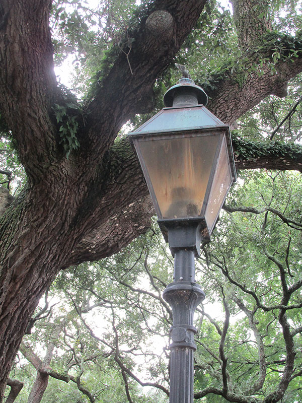 square_greene_lamp_web
